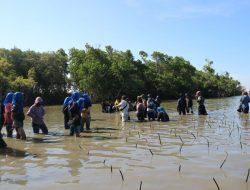 Kemah Konservasi Mangrove Desa Kajuara, Kadis Pariwisata : Ini Bisa Jadi Semangat Ekowisata